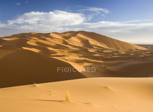 Laminage des dunes de sable orange — Photo de stock