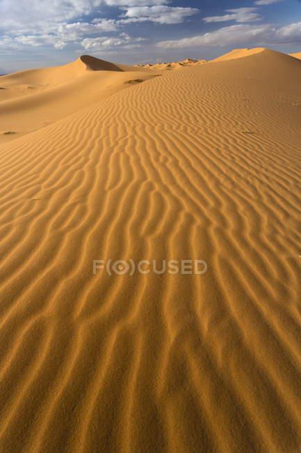 Orange sand dunes and sand ripples — Stock Photo