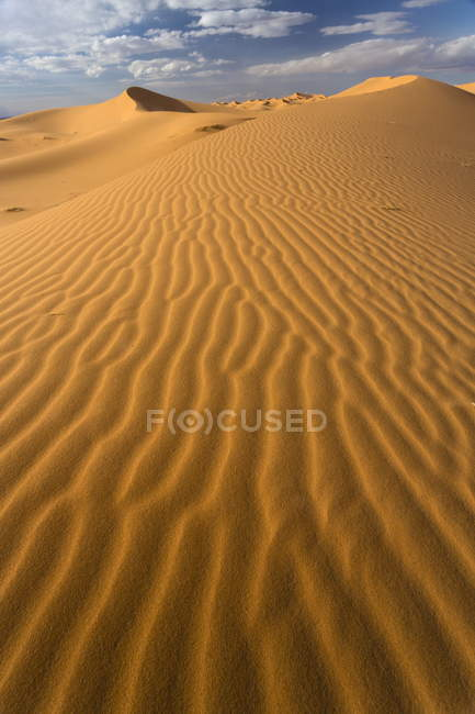 Orange sand dunes and sand ripples — Stock Photo