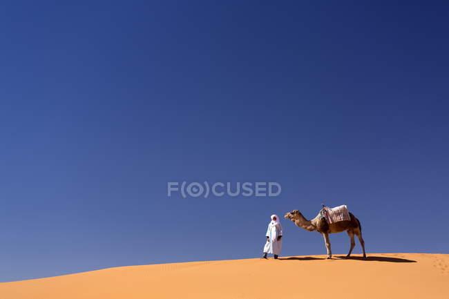 Berber Mann mit Kamel — Stockfoto