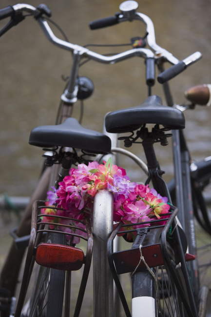Old bicycles and flower chain — Stock Photo