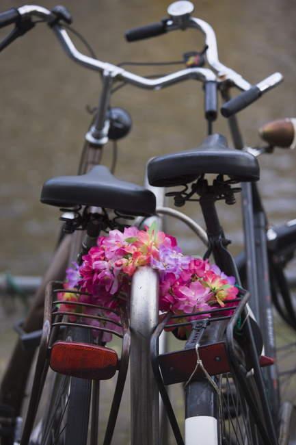 Alte Fahrräder und Blumenkette — Stockfoto