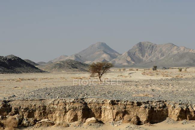 Erosion, Nubian Desert — Stock Photo