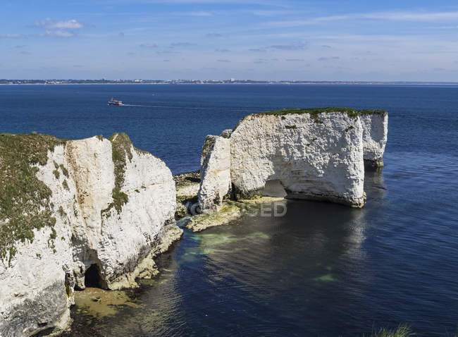 Old Harry Rocks im Vorland — Stockfoto