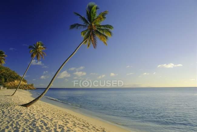 Ansicht von Darkwood Beach — Stockfoto