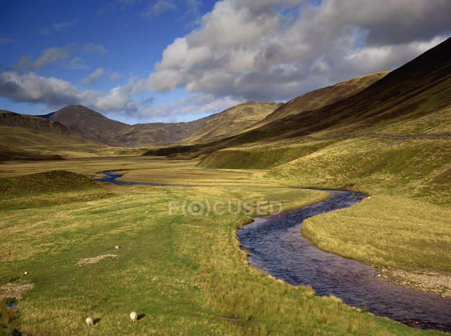 Успокоить горной реке на равнине — стоковое фото
