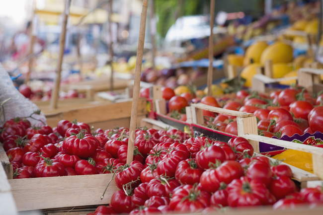Tomatoes on street market stall — Stock Photo