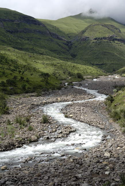 View of Meandering river — Stock Photo