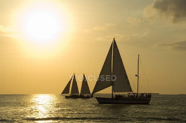 Вітрильники на заході сонця, Кі-Уест — стокове фото