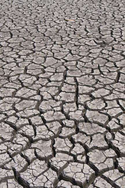 Cracked river bed in drought — Stock Photo