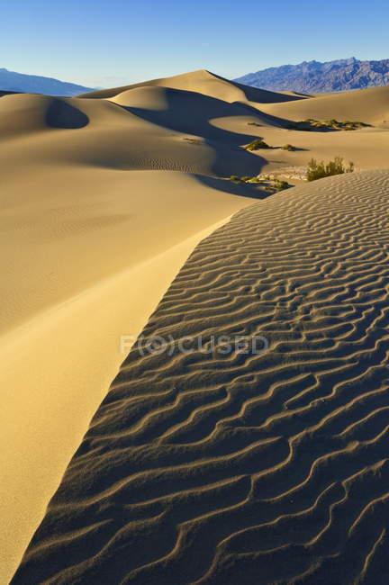Дюны и песчаные полосы — стоковое фото