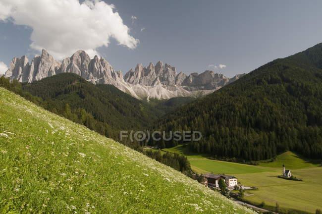 Vallée de montagne avec l'herbe verte et bâtiments — Photo de stock