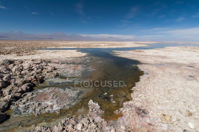 Vista della Laguna Chaxa — Foto stock
