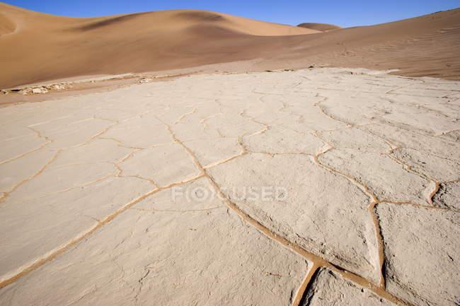 Отмечая мнение песчаных дюн — стоковое фото