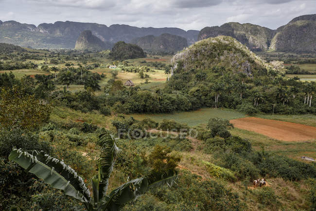 Mogotes dans la vallée de vinales — Photo de stock