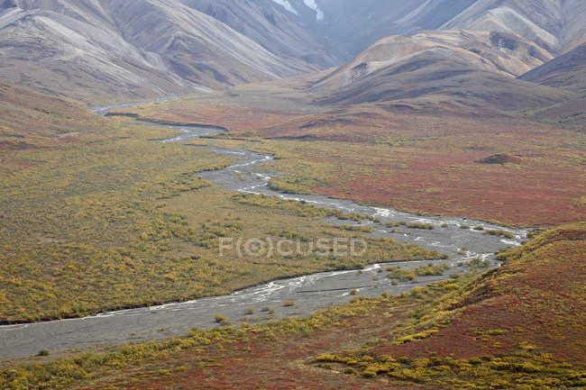 Плетені річки восени — стокове фото