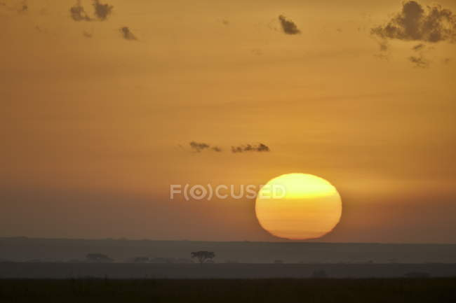 Sunrise at Serengeti National Park — Stock Photo