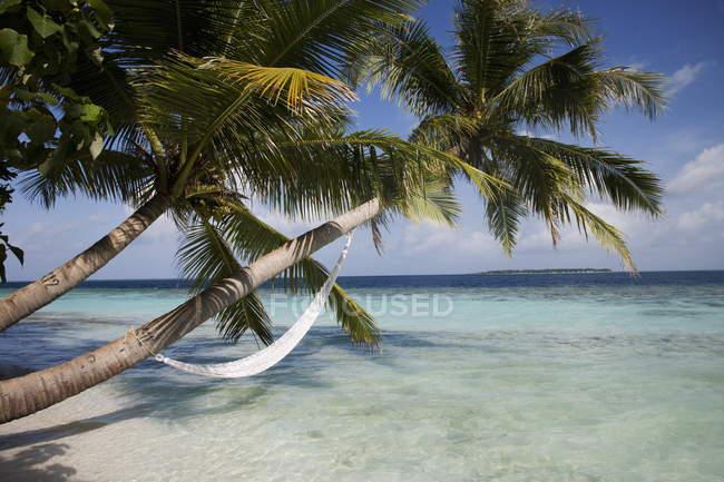 Мальдіви, Індійського океану — стокове фото