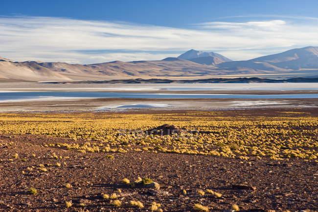 Соляные озера Лагуна-де-Tuyajto — стоковое фото
