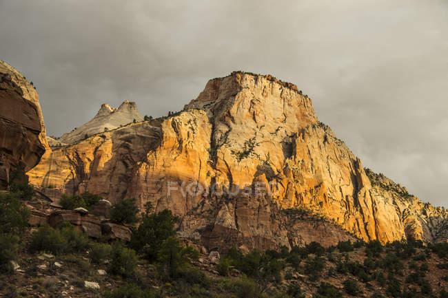 Hoch aufragenden Klippen des Zion National Park — Stockfoto