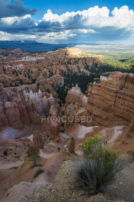 Sandstone formations of Bryce Canyon National Park — Stock Photo
