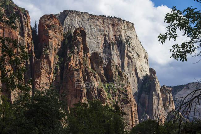 Піднімаються скелі Сіон Національний парк — стокове фото