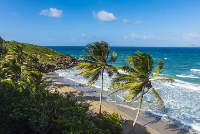 Petite Anse near Sauteurs, Grenada — Stock Photo