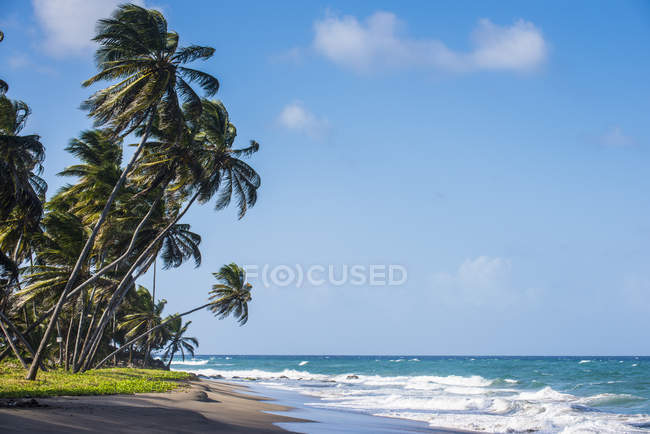 Beach of Sauteurs in Grenada — Stock Photo