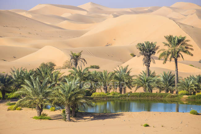 Observando la vista del desierto Remah - foto de stock