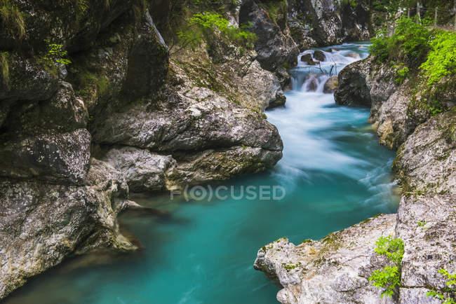 View of Tolminka River — Stock Photo