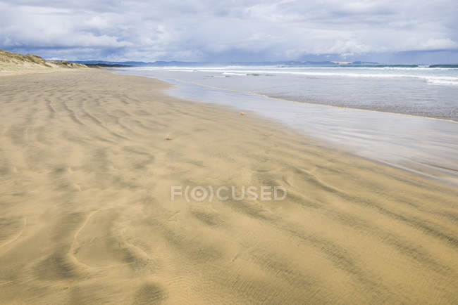 Linea costiera al 90 Mile Beach — Foto stock