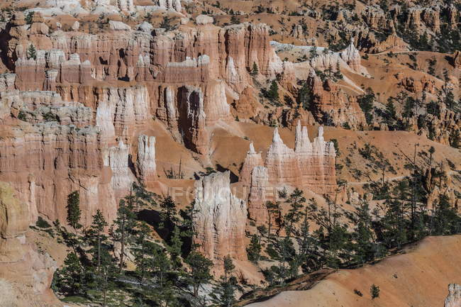 Hoodoo rock formations — Stock Photo