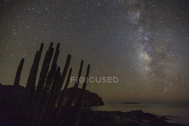 Nachtansicht der Milchstraße — Stockfoto