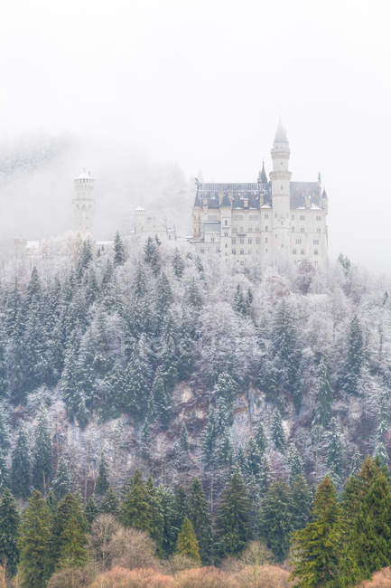 Neuschwanstein Castle in winter — Stock Photo
