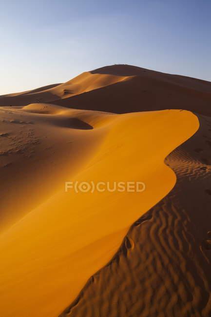 Dunes de sable au désert du Sahara — Photo de stock