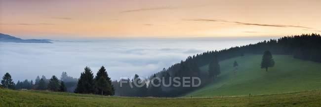 Meer von Nebel, Blick vom Schauinsland Mountain — Stockfoto