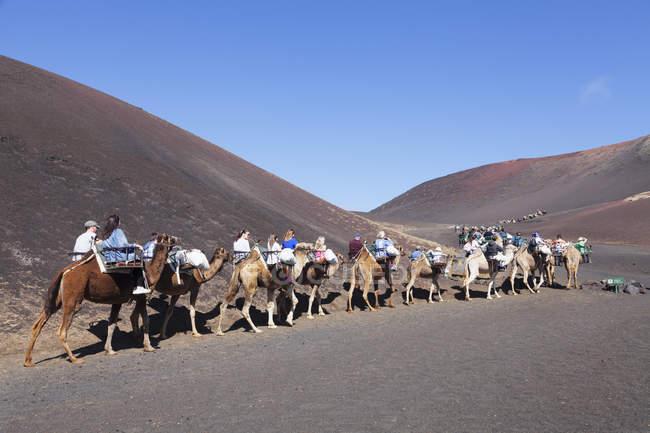 Touristen auf Kamel-tour — Stockfoto