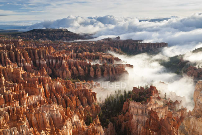 Pinnacles and hoodoos with fog — Stock Photo