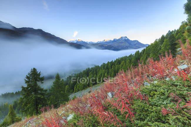 Туман розчинення і розкриваючи верхній частині Piz la Margna — стокове фото