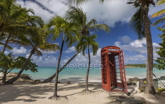 Caixa de telefone vermelho sob árvores — Fotografia de Stock
