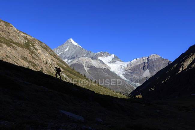 Hiker climbs ridge with Weisshorn in background — Stock Photo