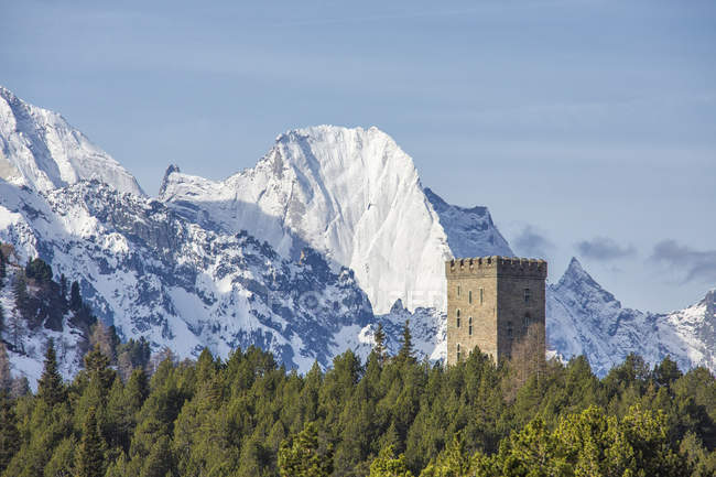 Belvedere Tower and snowy peaks — Stock Photo
