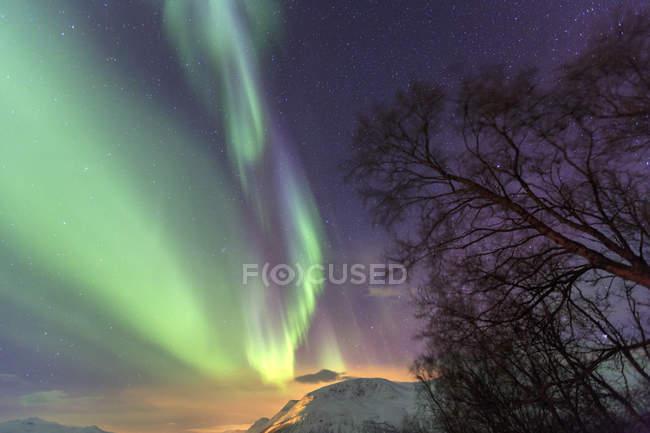 Nordlichter auf eisige Landschaft von Svensby — Stockfoto
