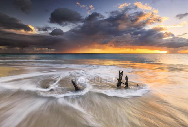 Wellen und karibischer Sonnenuntergang mit Baumstämmen — Stockfoto