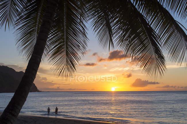 Castara Bay in Tobago — Stock Photo