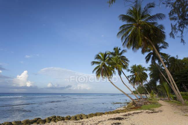 Вид на пляж Гастингс — стоковое фото