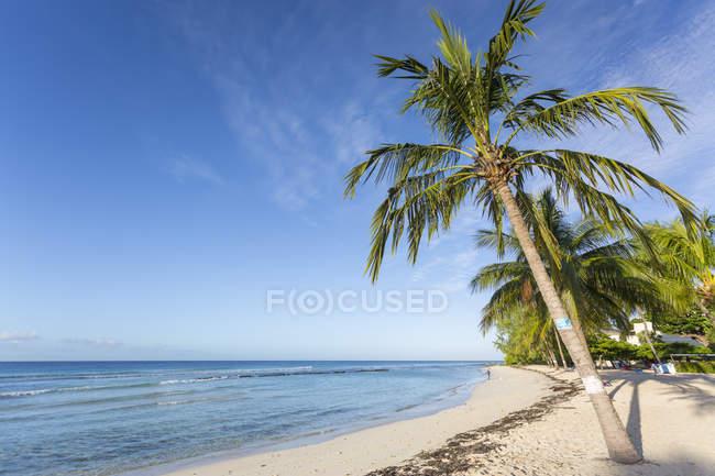 Вид на пляж Саванна — стокове фото