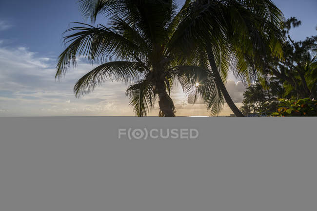 View of Maxwell Beach — Stock Photo