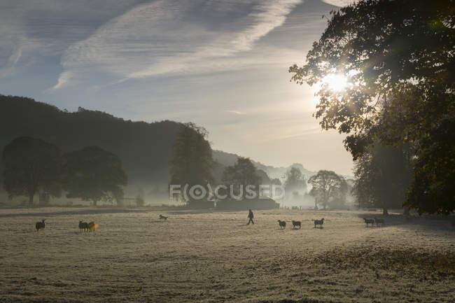 View of Cromford, Matlock — Stock Photo
