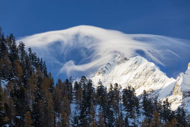 Brille l'aube Piz Bernina — Photo de stock